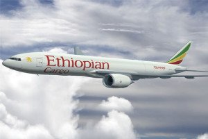 Ethiopian Cargo launches South Korea-US service